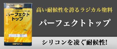 パーフェクトラジカル